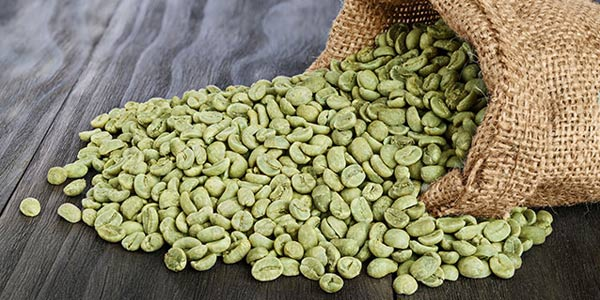 (WGCP) Whole Green Coffee Powder 600x300